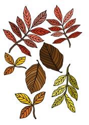 Malvorlage für den Herbst
