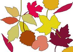 Igel im Blätter