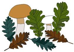 Malvorlage Blätter & Pilze