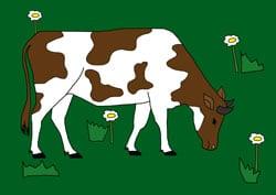 Ausmalbilder Kuh