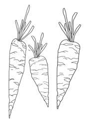 Ausmalbilder Gemüse Basteln Gestalten