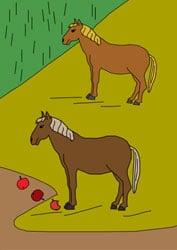 Malvorlagen - Pferde