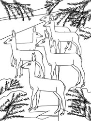 Ausmalbilder Tiere Im Winter Basteln Gestalten