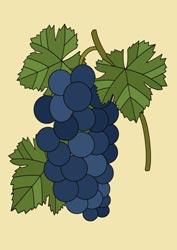 Malvorlagen Weintrauben
