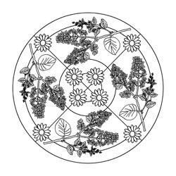 mandalas für den frühling | basteln  gestalten