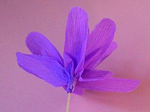 Bastelanleitung für Papierblumen
