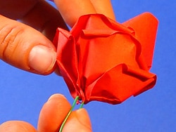 Schritt 13: Blüten drücken und Draht drehen